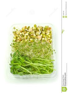 http://www.dreamstime.com/royalty-free-stock-image-organic-sprouts-image13222146